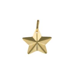 Pandant aur 14K star