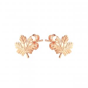 Cercei aur 14K leaf